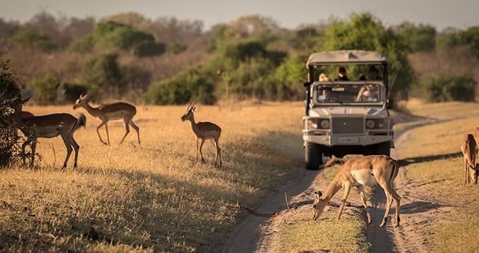 driving through Botswana
