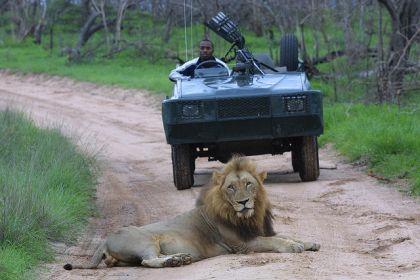 Transfrontier Conservation Park, Mozambique